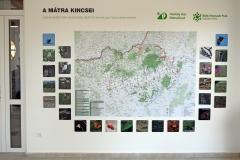 Natura 2000 jelölőfajok.