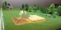 Akik szántottak vetettek, arattak és összegyűjtötték a termést