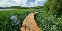 Pallósor-híd