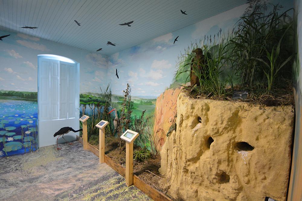 A madaras terem. A megnyitón megkérdezték, honnan hoztuk a löszfalat...