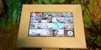 Android alapú videó a madárhangokról